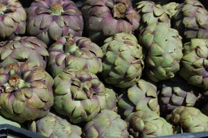 Artichokes as the farm market