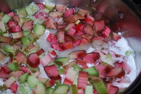 Strawberry Rhubarb 020