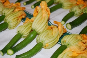 Squash Blossoms for the starter